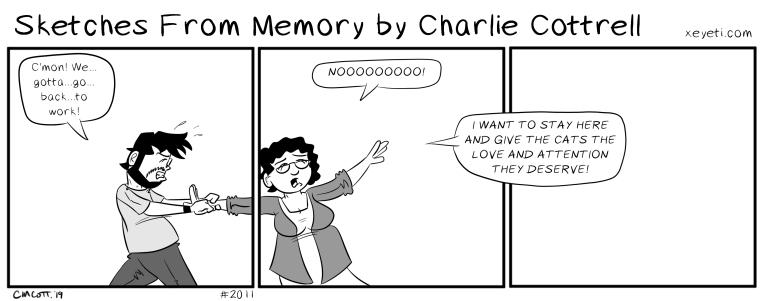 comic2011